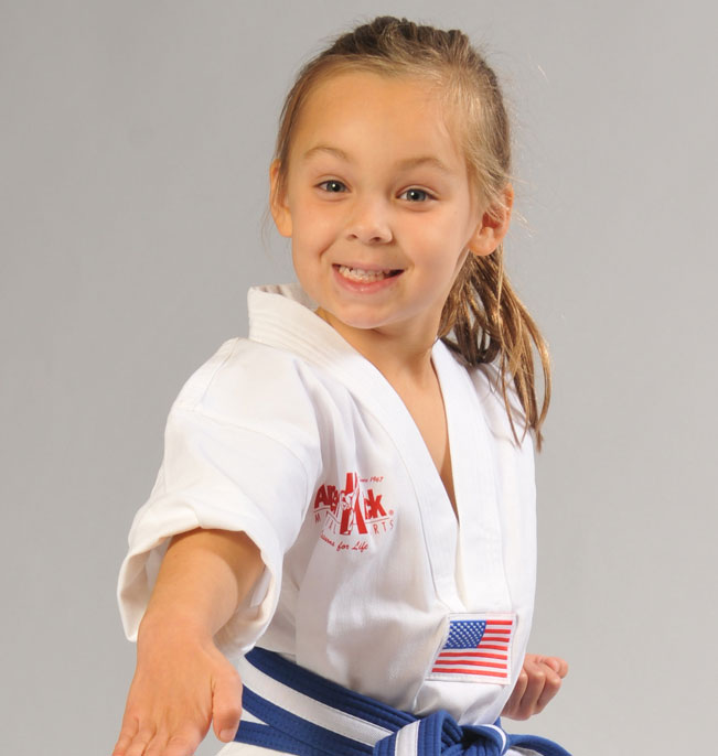 Amerikick Karate Martial Arts